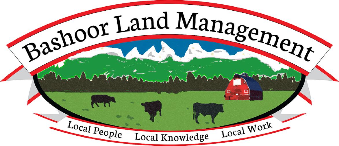 Bashoor Land Management LLC